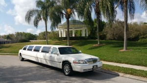 Wedding Transportation-